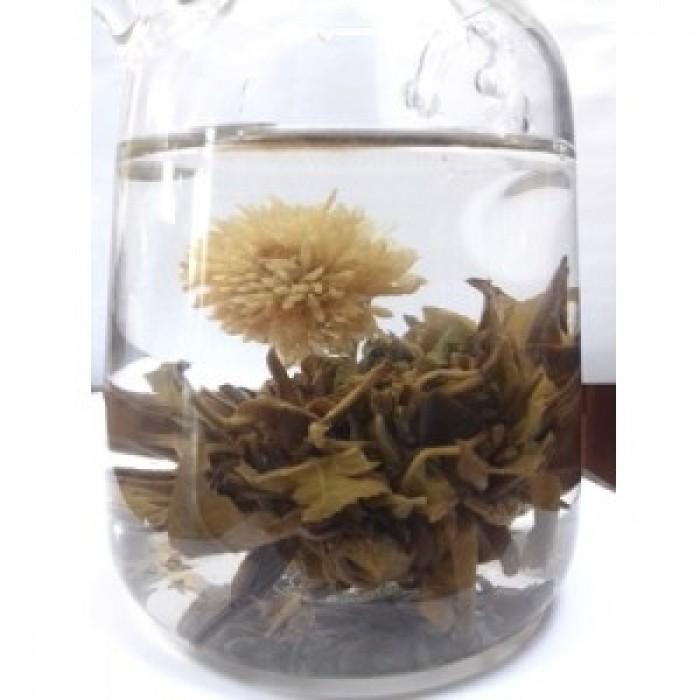 Peach Marigold Tea Flower